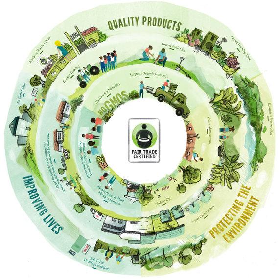 2015-10-21-1445467865-1360479-fair_trade_infographic.jpg