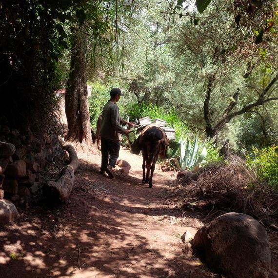 2015-10-25-1445803726-6877776-morocco.jpg