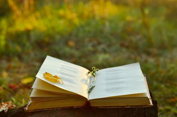 2015-10-29-1446147365-7532417-bookoutdoorsfinwal.jpg