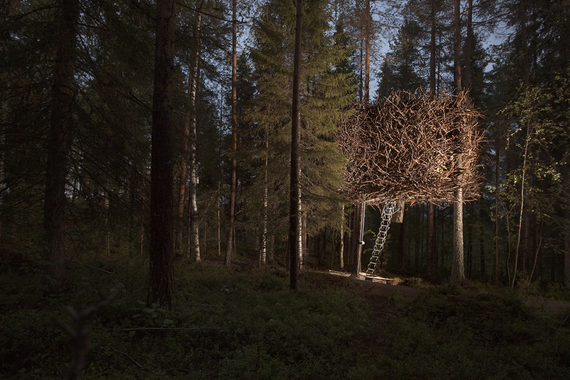 2015-10-30-1446184153-7475173-treehotel4.png