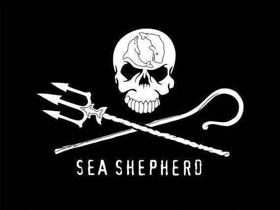 2015-11-04-1446651452-3639633-seashepherd.jpg