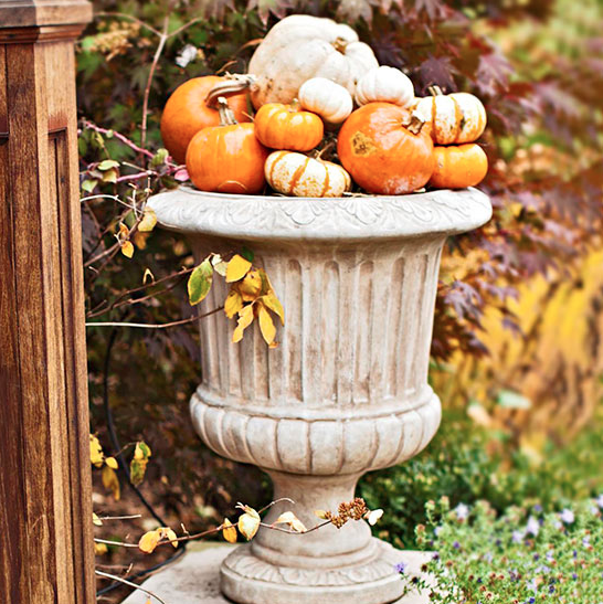 Outdoor Fall Wedding Decorations Ideas: Harvest Decorations For Your Wedding