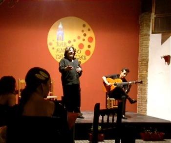 2015-11-09-1447091152-8787977-Flamenco2.jpg