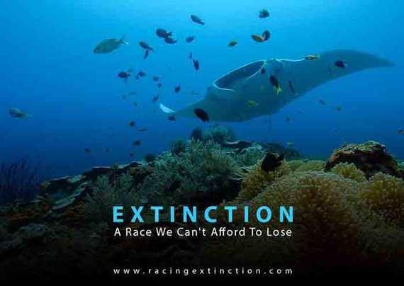 2015-11-11-1447256904-9272771-racing_extinction.jpg