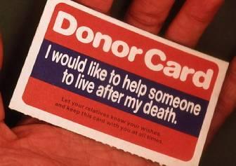 2015-11-12-1447360056-7663007-donor.jpeg