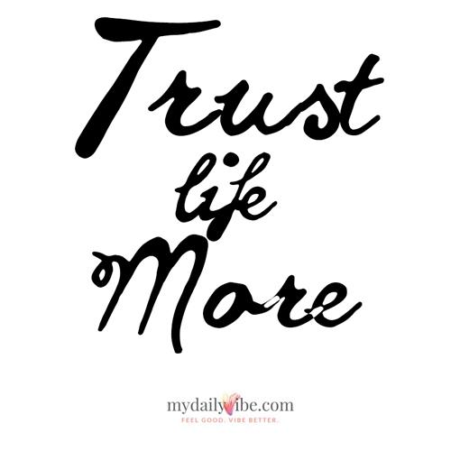 2015-11-16-1447701351-3483647-mdv_trustlifemore_500x500.jpg