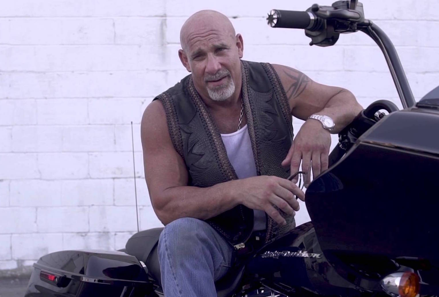 bill goldberg wwe