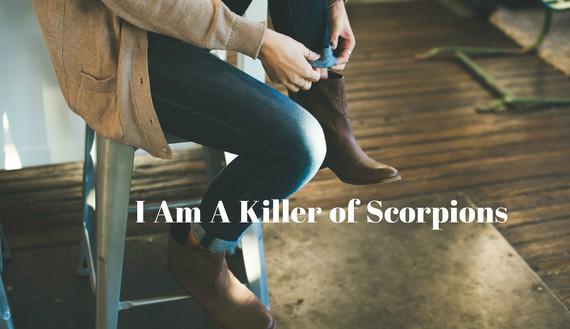 2015-11-20-1448035503-9629399-Scorpions.jpg