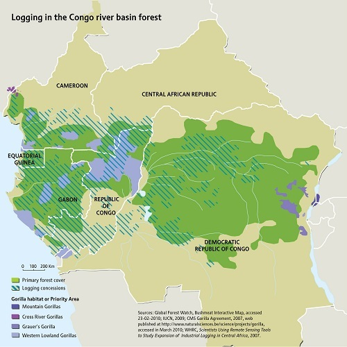 2015-11-30-1448844456-3008229-logging_in_the_congo_river_basin_forest.jpg