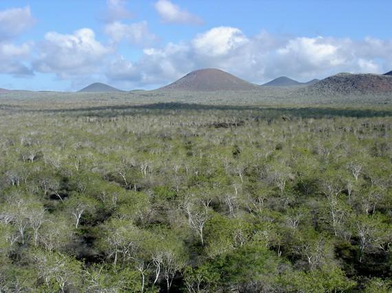 2015-11-30-1448915498-1801725-Galapagoslandscape.jpg