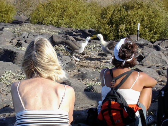 2015-11-30-1448915783-3817957-Galapagosgirlsandfightingboobies.jpg
