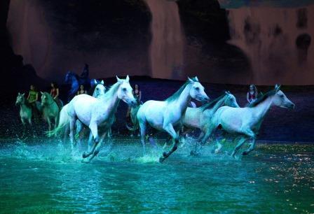 2015-12-01-1448937358-8315233-pony3.jpg