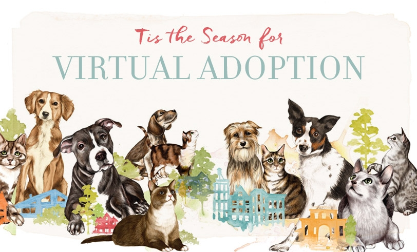 Image result for virtual adoption