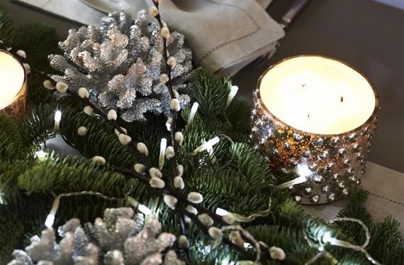 2015-12-03-1449140263-4063145-silver_coral_vcsx101_pp.jpg