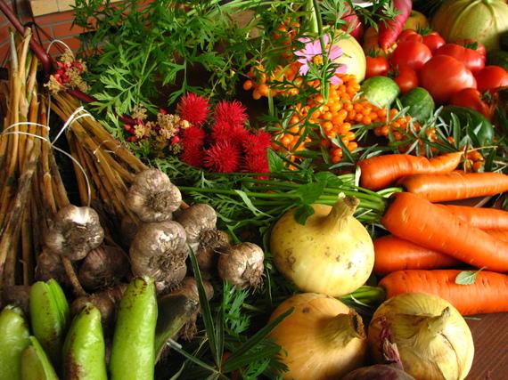 2015-12-05-1449333738-8347074-Ecologically_grown_vegetables.jpg