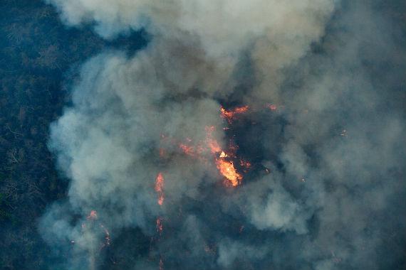 2015-12-09-1449680322-2955716-forestfires_use.jpg