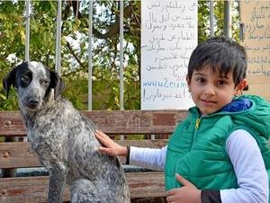 2015-12-10-1449777327-3622707-SyrianboyforHuffPost.jpg