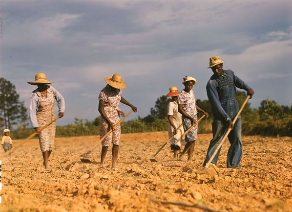 2015-12-13-1450034873-3484622-1024pxSharecroppers_chopping_cotton__1941.jpg
