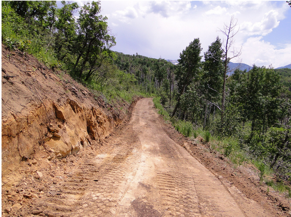 2015-12-15-1450209974-4028921-roadsfromminingcoalinforestsSourceearthjustice.orgccr307.png