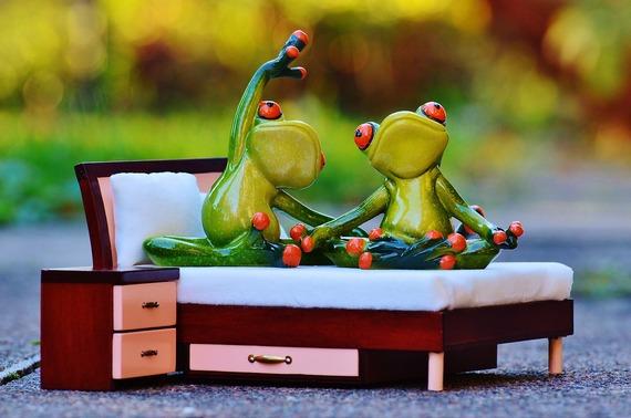 2015-12-16-1450227713-3725758-frog1080010_1280.jpg