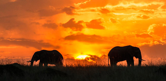 2015-12-17-1450369671-2527400-sunset_kenya1.jpg