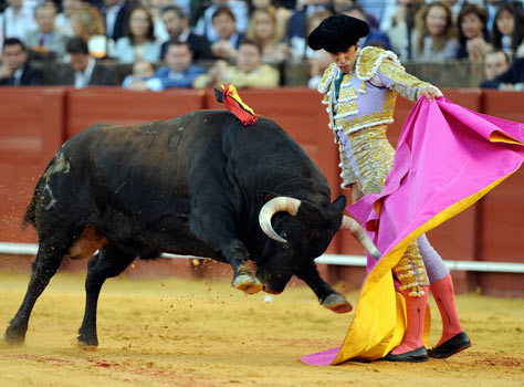 2015-12-18-1450434751-1926381-bullfightingimage1.jpg