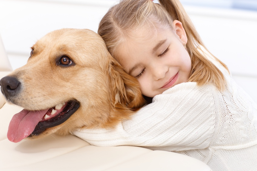Things You Should Know Before You Get Pet Health Insurance ...