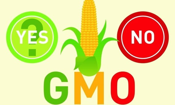 laws should be pass to label foods with genetically modified organisms After several attempts to pass mandatory gmo food labeling in 30 states the great gmo food fight: what's next 0 (genetically modified organisms.