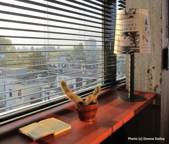 2015-12-31-1451560788-5083142-Volkshotel_Amsterdam_room_with_a_view_and_a_cactus.jpg