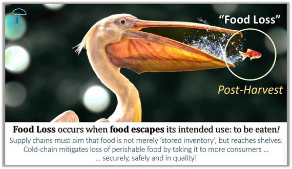 Food Loss Post Harvest
