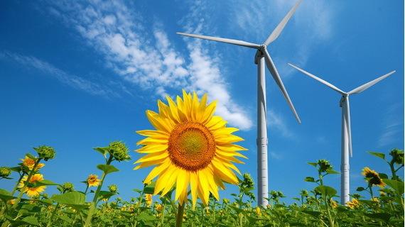 2016-01-06-1452048190-6427548-windturbineflowerdaisiesSourcewww.pinterest.comccr310.jpg