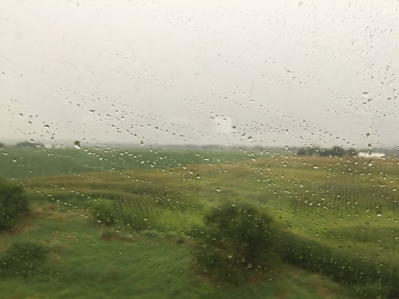 2016-01-07-1452185793-7018581-rain.jpeg
