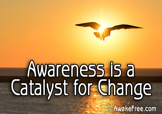 Awareness is a Catalyst for Change