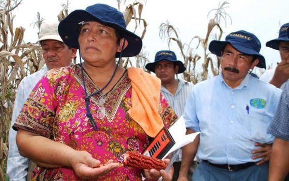 2016-01-08-1452278251-8192859-mexicancornfarmer.jpg