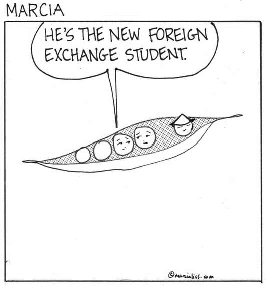 Foreign exchange news