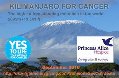 2016-01-17-1453053465-8435352-KilimanjaroforCancer.jpg