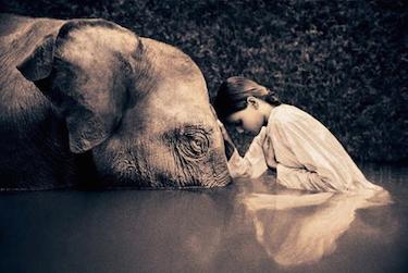 2016-01-21-1453400912-7113484-elephantandgirl.png