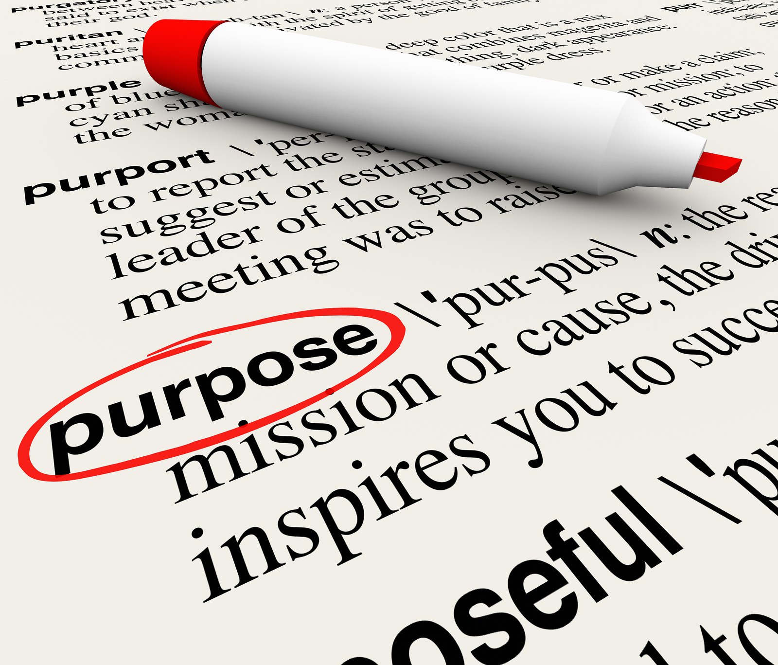 Launching A Business Whats Your Purpose