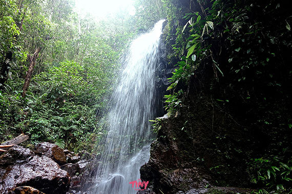 2016-01-26-1453774310-5960987-rainforestwaterfalllakeyojoahonduras.jpg
