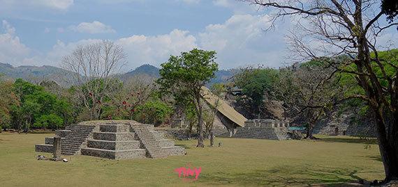 2016-01-26-1453774863-8499970-Scarletmacawsflyingoverpyramidhonduras.jpg