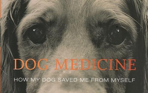 2016-01-27-1453863609-1608630-dogmedicinecover0001.jpg
