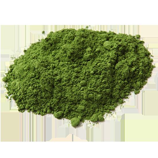 Color Trend Powder