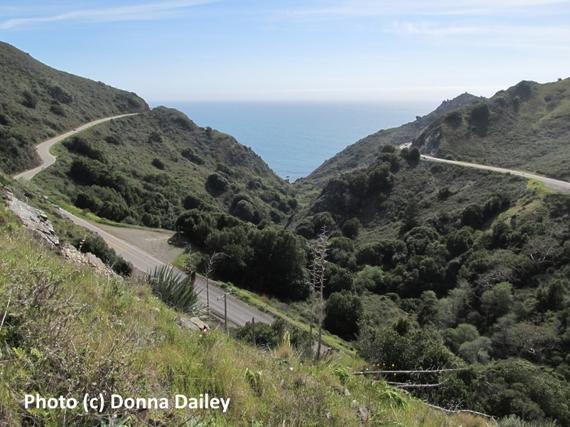 2016-02-01-1454334324-5825505-Top_USA_Driving_Tips_Pacific_Coast_Highway.jpg