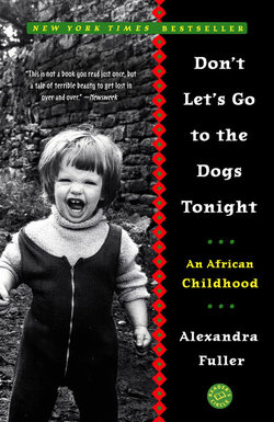 2016-02-05-1454693186-5812450-DontLetsGototheDogsTonightAnAfricanChildhood.jpg