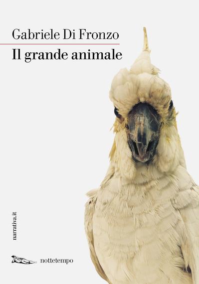 2016-02-08-1454938167-8006728-DiFronzo_Animale_GR.jpg