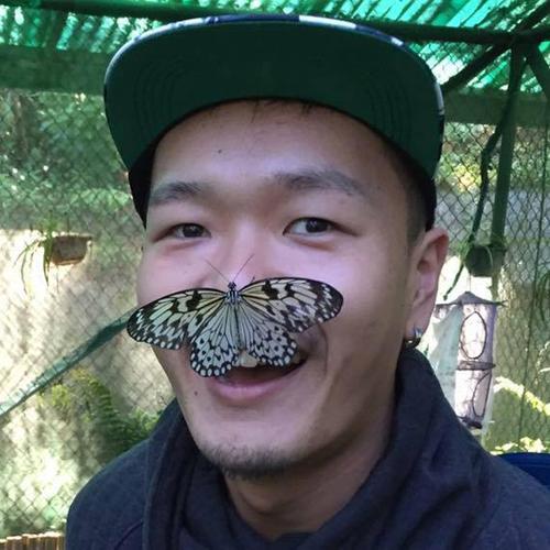 2016-02-11-1455207016-6502364-butterfly.jpg