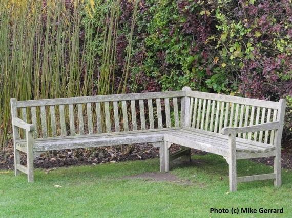 2016-02-12-1455281273-4107904-Harrogate_Harlow_Carr_Gardens_6.jpg