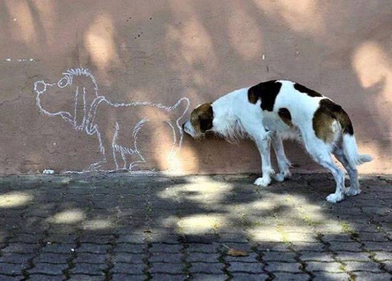 2016-02-24-1456353047-3999828-Hund1.jpeg