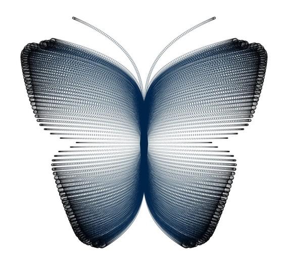 2016-02-25-1456395640-5824030-Butterfly_2.jpg