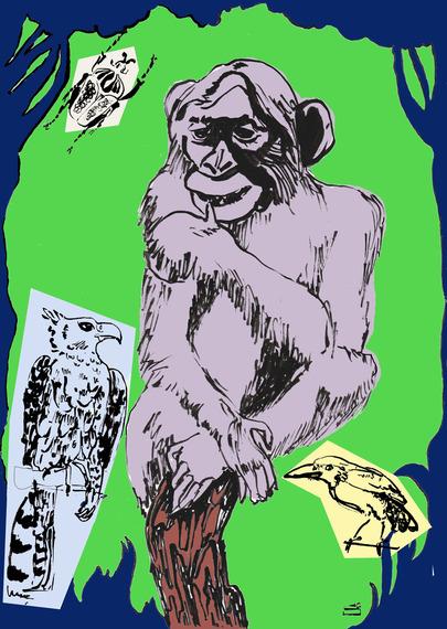 2016-02-25-1456409473-7849798-chimp0.jpg